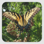 Swallowtail Butterfly III Beautiful Colorful Photo Square Sticker