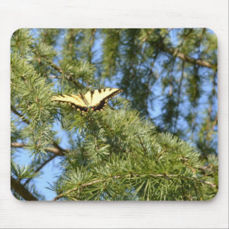 Swallowtail Butterfly in a Pine Tree Mouse Pad