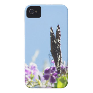 Swallowtail Butterfly iPhone 4 Covers