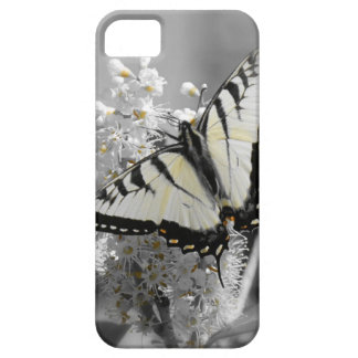 Swallowtail Butterfly iPhone SE/5/5s Case