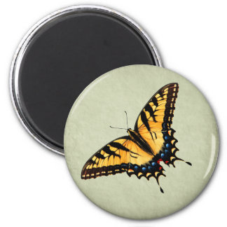 Swallowtail Butterfly Magnet