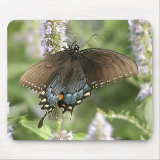 Swallowtail butterfly mousepad mousepad