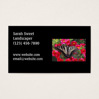 Swallowtail Butterfly on Flowers Business Card