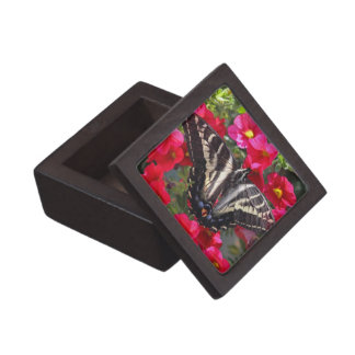 Swallowtail Butterfly on Flowers Premium Jewelry Boxes