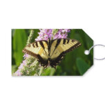 Swallowtail Butterfly on Purple Wildflowers Gift Tags