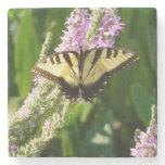 Swallowtail Butterfly on Purple Wildflowers Stone Coaster