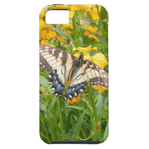 Swallowtail Butterfly  on Siberian Wallflowers iPhone 5 Case