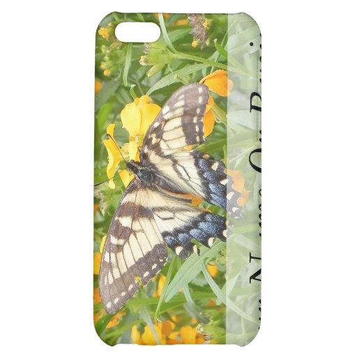 Swallowtail Butterfly  on Siberian Wallflowers iPhone 5C Case