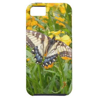 Swallowtail Butterfly  on Siberian Wallflowers iPhone SE/5/5s Case