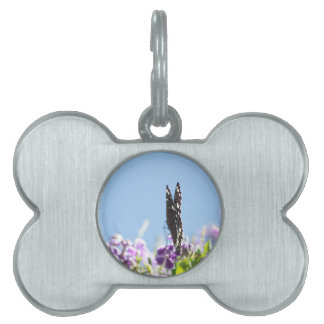 Swallowtail Butterfly Pet ID Tag