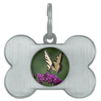 Swallowtail Butterfly Pet Name Tag