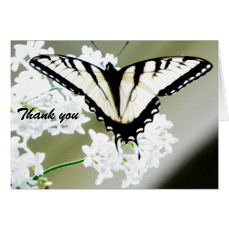 Swallowtail Butterfly Photo Thank You Card