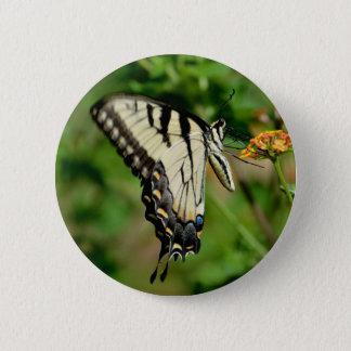 Swallowtail Butterfly Pinback Button