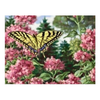 Swallowtail Butterfly Pink Flowers Garden Painting Postcard