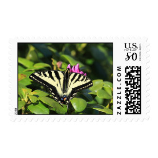 Swallowtail butterfly postage