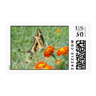 Swallowtail Butterfly Postage Stamps