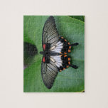 Swallowtail Butterfly Puzzle