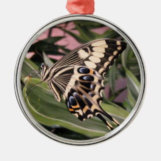 Swallowtail Butterfly Round Metal Christmas Ornament