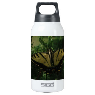 Swallowtail Butterfly SIGG Thermo 0.3L Insulated Bottle