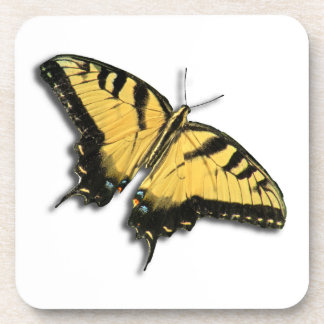 Swallowtail Butterfly Square Cork Coaster