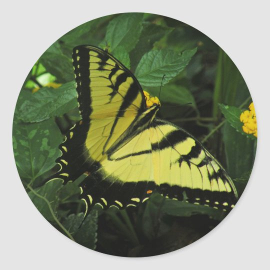 Swallowtail Butterfly Sticker