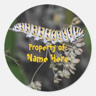 Swallowtail Cat Bookplate