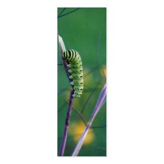 Swallowtail Cat Science Bookmark Mini Business Card