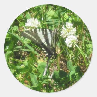swallowtail de la cebra etiquetas