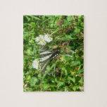 swallowtail de la cebra puzzle con fotos