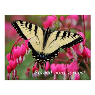 Swallowtail del este postal