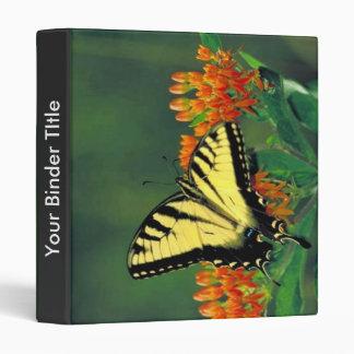 Swallowtail del tigre en mala hierba de mariposa
