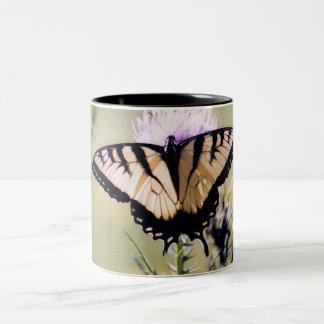 Swallowtail del tigre taza de dos tonos