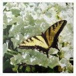 Swallowtail en el Hydrangea blanco Azulejos Cerámicos