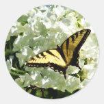 Swallowtail en el Hydrangea blanco Pegatinas Redondas