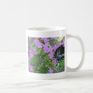 swallowtail en phlox tazas de café