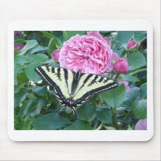 swallowtail en rosa tapete de ratones