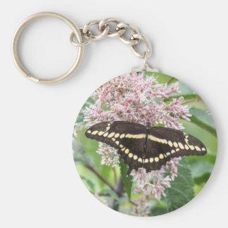 Swallowtail gigante llaveros personalizados