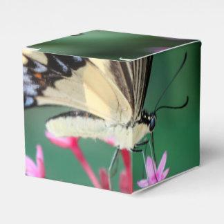 Swallowtail gigante Papilio Cresphontes Caja Para Regalo De Boda