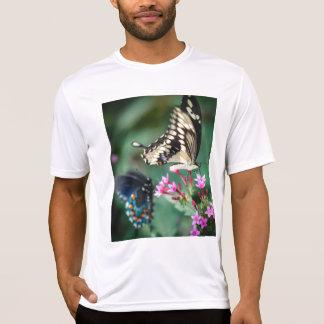 Swallowtail gigante Papilio Cresphontes Polera