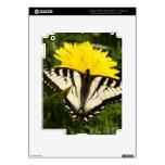 Swallowtail hecho andrajos iPad 3 skin