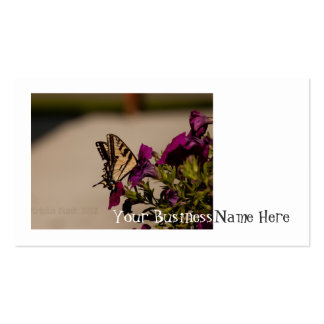 Swallowtail in the Petunias Business Card