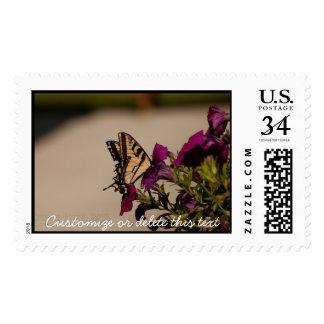 Swallowtail in the Petunias; Customizable Postage