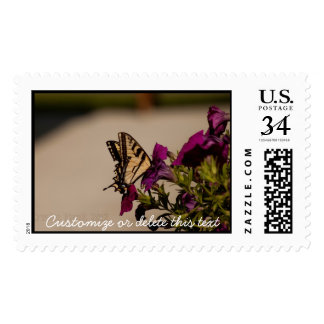 Swallowtail in the Petunias; Customizable Postage Stamp