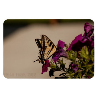 Swallowtail in the Petunias Magnet