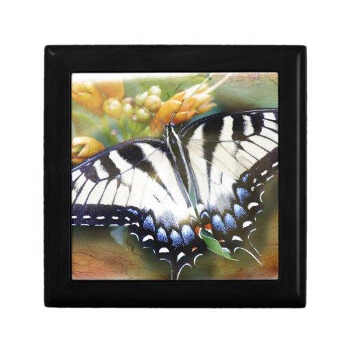 Swallowtail Joyero Cuadrado Pequeño