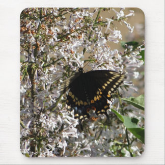 Swallowtail & Lilac Mouse Pad