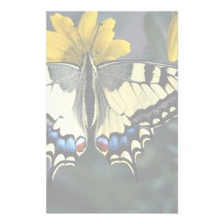 Swallowtail, machaon de Papilio Papeleria De Diseño