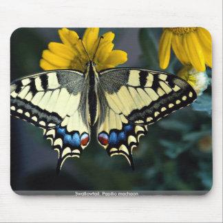 Swallowtail, machaon de Papilio Tapetes De Ratones