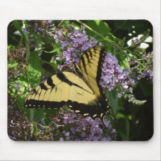 Swallowtail Mouse Pad