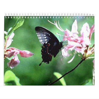 Swallowtail negro (2) calendarios de pared